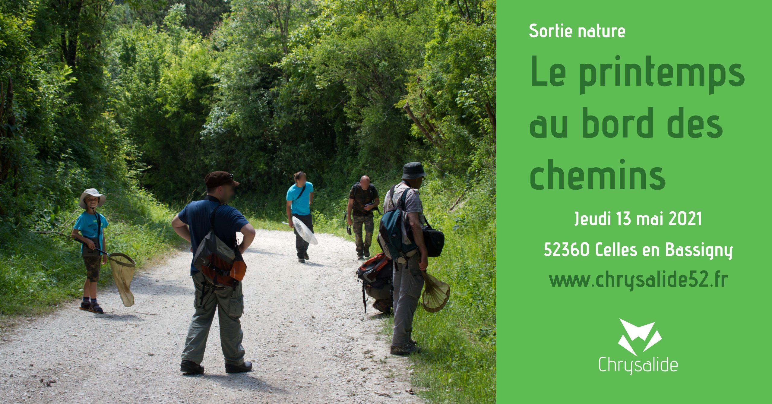 Sortie nature - Le printemps au bord des chemins- Chrysalide52 - Michael Geber - Haute-Marne