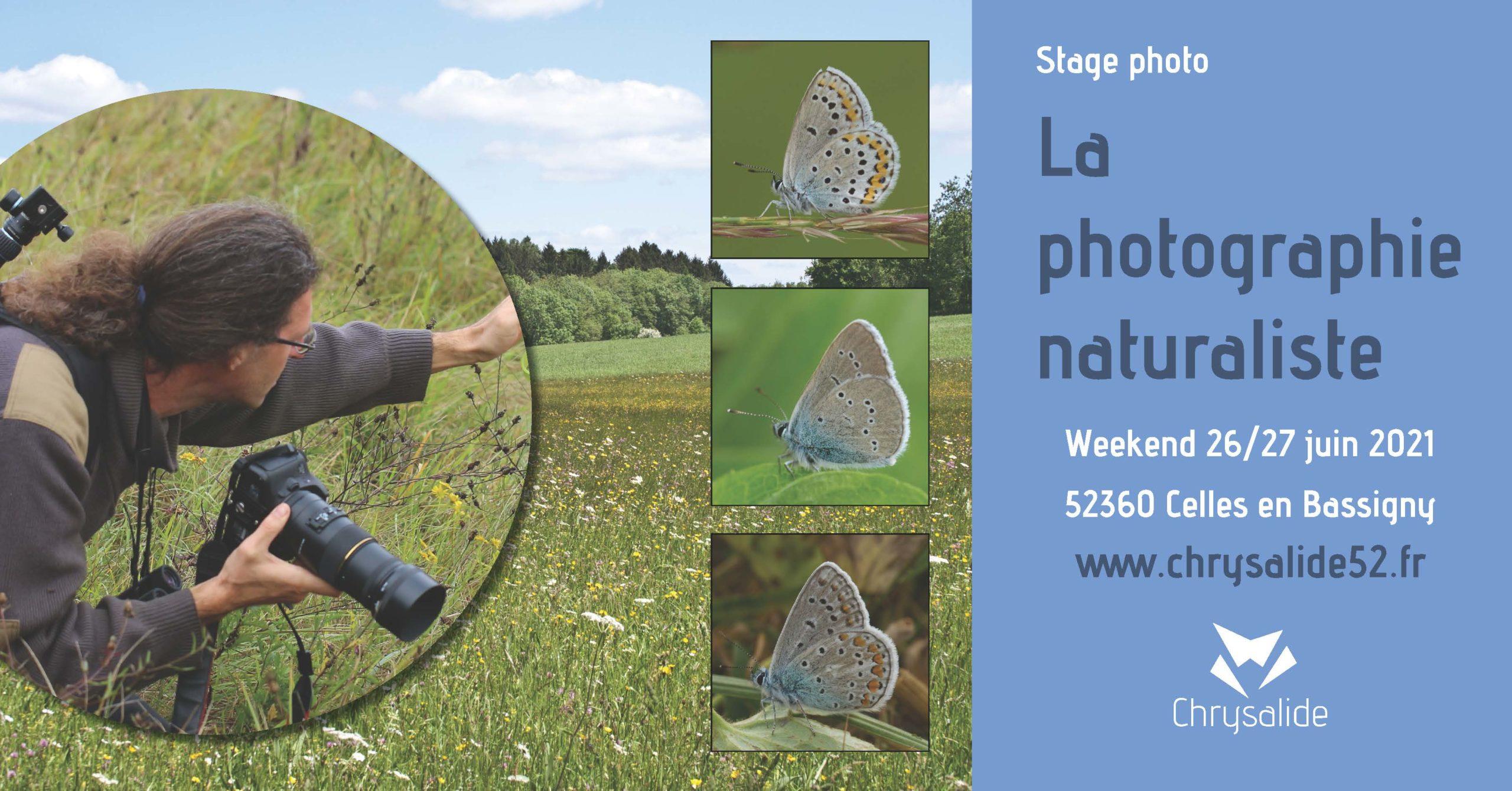 Stage photo - La photographie naturaliste - Chrysalide52 - Michael Geber - Haute-Marne